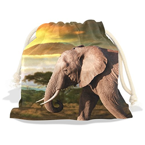 African Elephant Pattern Print Velvet Drawstring Gift Bag Wrap Present Pouches Favor for Jewelry, Coin, Holiday, Birthday, Party (Coin Elephant Set)