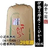 【精米無料・白米】伊勢志摩産こしひかり30kgを精米します/産地直送/つきたて新鮮