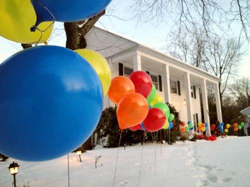 Aerostem Balloon Sticks Stylish Balloons product image