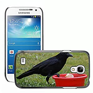 Just Phone Cover Slim Protector Hard Shell Cover Case // M00138619 Crow Raven Raven Bird Black Bill // Samsung Galaxy S4 Mini i9190
