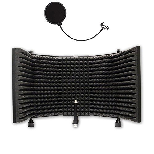 AxcessAbles SF-101 Desktop Recording Studio Microphone Isolation Shield with Pop Filter AXCSF-101
