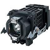 Osso Lamp - Original Bulb and Generic Housing for Sony KF-50E200A A1127024A / A1129776A / F93087500 / XL-2400 / XL2400C / XL-2400C / XL2400E / XL-2400E / XL2400U / XL-2400U TV by Osso Lamp [並行輸入品]