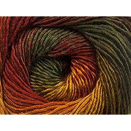 (1) 100 Gram Autumnal Primadonna Wool Blend Self-Striping Yarn, Fine/Sport Weight