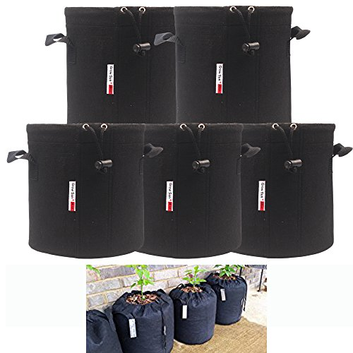10 gallon pots for plants - 9