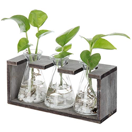 Swing Vase - MyGift Rustic 3-Glass Beaker Vases with Grey Wood Stand