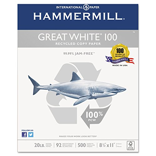 Hammermill 86790 Great White 100 Recycled Copy Paper, 20lb, 8-1/2 x 11, White, 5,000 ()