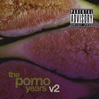 Stupid People Doing Stupid Things [Explicit] by The Porno