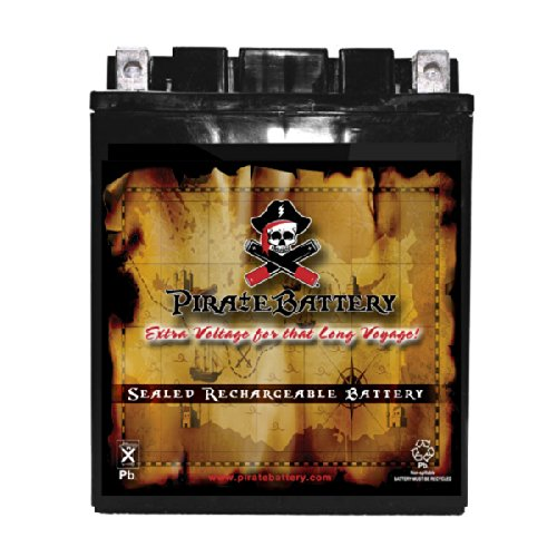 (YB14A-A2 High Performance Power Sports Battery - AGM - Replacement for CTX14AH-BS, CC14A-A2)