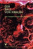Der Ball von Xibalba: Das mesoamerikanische Ballspiel