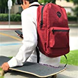 Skunk Element School Backpack- Smell Proof