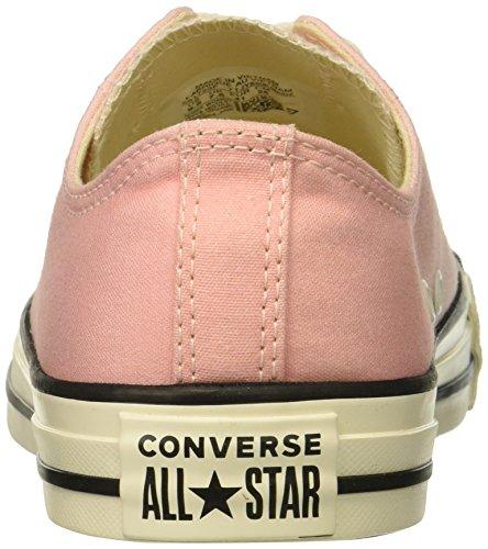 Storm Ombre Chuck Top egret Star All Taylor Pink egret Converse561724f Femme Low ZSqO8w