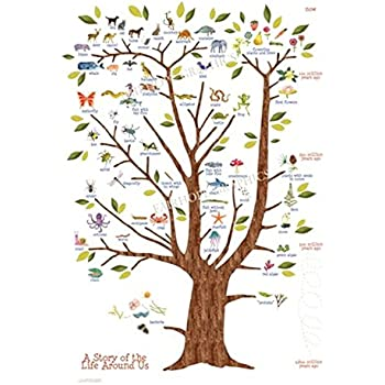 Tree Of Life Poster Print Natural History Of Existing Life