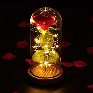 LEDMOMO Red Silk Rose and Led Light in Glass Cover on A Wooden Base DIY Handmade Romantic Enchanted Love Forever Gift for Wedding, Valentine's Day, Anniversary, Birthday 3