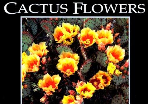 Vintage Postcard Flowers - Cactus Flowers (Postcard Books)