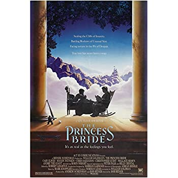 THE PRINCESS BRIDE classic movie poster FAIRY TALE fantasy 1987 ACTION 24X36 (reproduction, not an original)