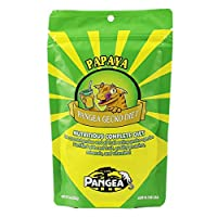 Pangea Fruit Mix Banana Papaya Complete Gecko Diet / Food 2oz