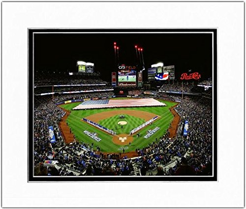 Citi Field New York Mets 2015 World Series Photo (Size: 11