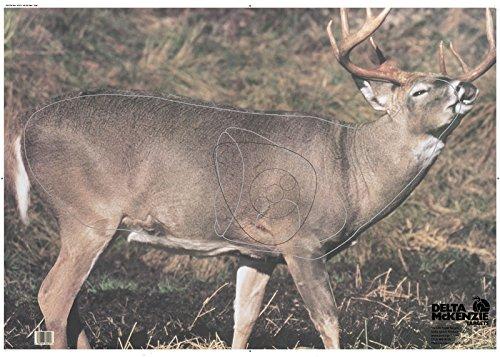DELTA McKENZIE Tail Rut Paper Target, Multicolor, 27x39 (Delta Target Deer)