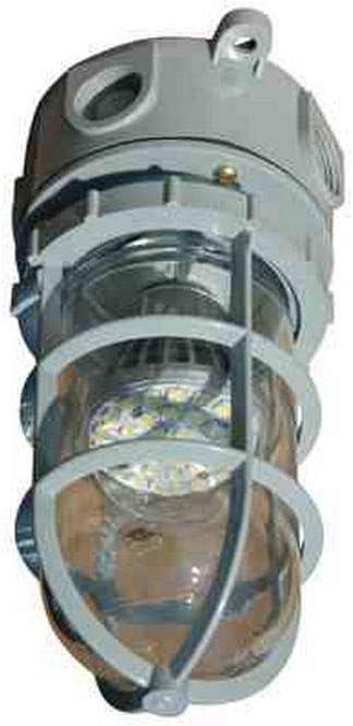 10 Watt Industrial LED Strobe Light - Chemical/Corrosion Resistant - Non-Metallic - Waterproof