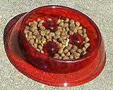 Blush Translucent Brake-Fast Dog Food Bowl – Small, My Pet Supplies