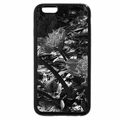 iPhone 6S Case, iPhone 6 Case (Black & White) - BLOOD LILY