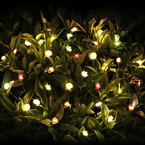 Decoration String Lights - 10ft Waterproof Lights with 30 LEDs for Valentine\'s Day Deco Home Courtyard (Battery Not Included)