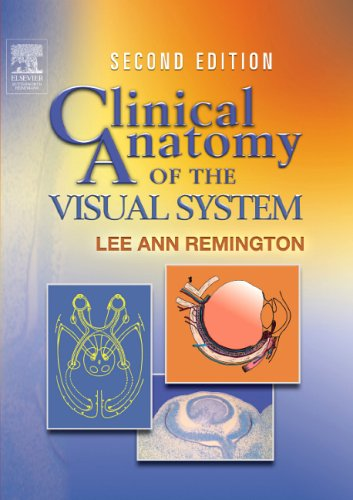 Clinical Anatomy of the Visual System (Clinical Anatomy And Physiology Of The Visual System)