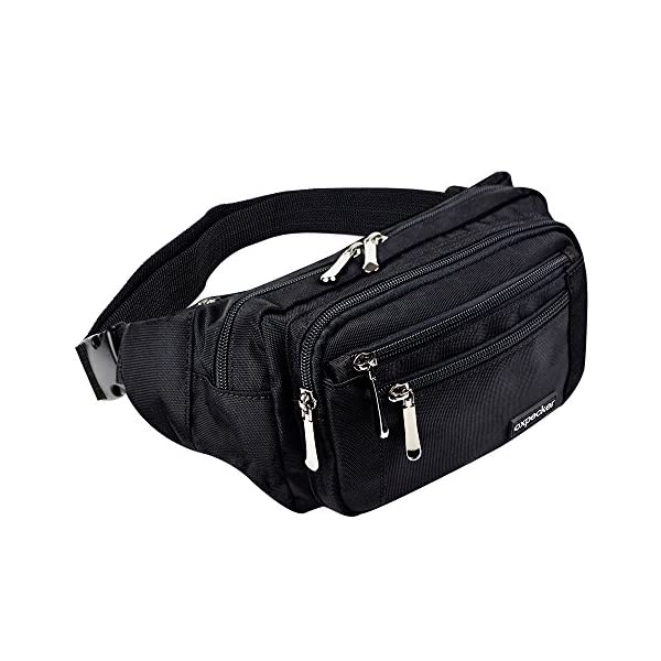 Waterproof Fanny Pack for Men/&Women Workout Traveling Casual Running Hiking Cycling Hip Bum Bag with Adjustable Strap for Outdoors oxpecker Waist Pack Bag with Rain Cover