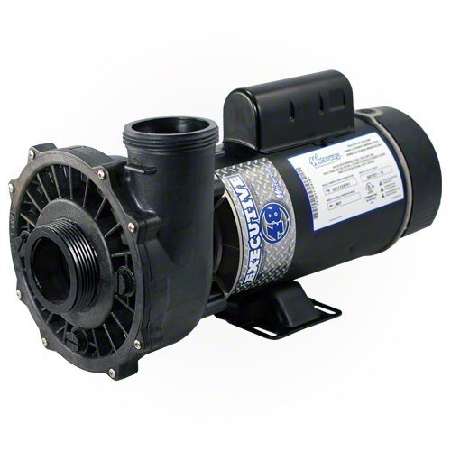 Waterway 3420610-1A Executive Pump,1.5 Hp,115V, 2-Spd,48 Fr, 2 X 2 by Waterway