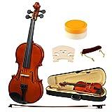 Strong Wind Professional Violin 1 2 Size Solid Wood Kids Acoustic Violin Starter Kit with Hard Case, Bow, Shoulder Rest and Rosin