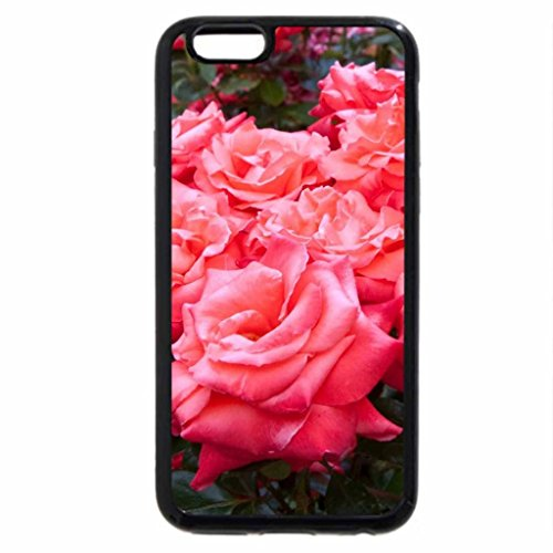 iPhone 6S / iPhone 6 Case (Black) Rose heaven