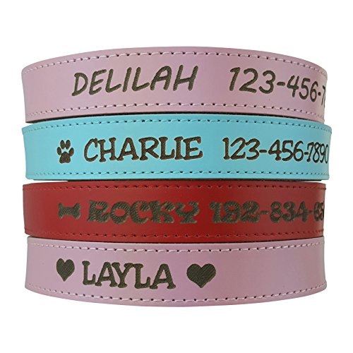 Custom Catch Personalized Dog Collar - Engraved Soft Leather in XS, Small, Medium or Large Size, ID Collar, No Pet...
