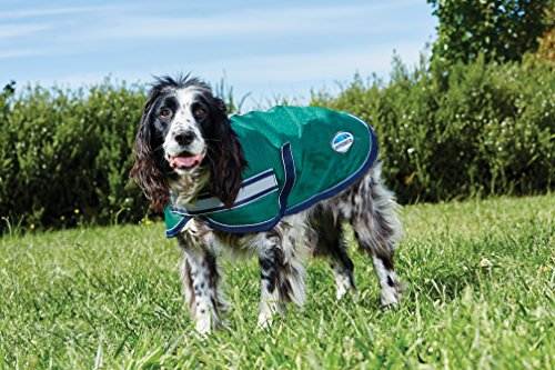 Weatherbeeta Parka 1200D Dog Coat Hunter/Navy 22'' by Weatherbeeta