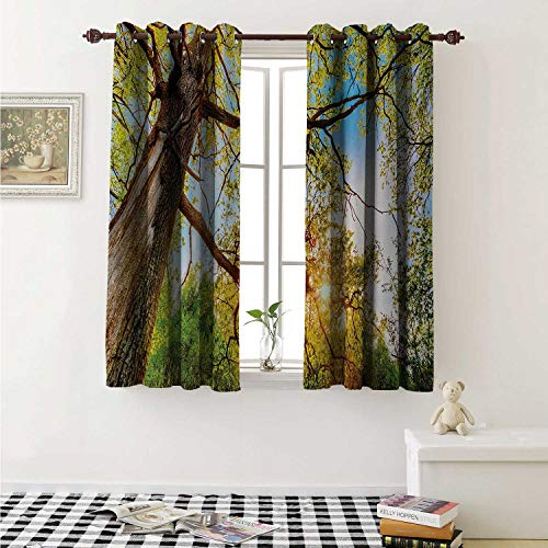 shenglv Forest Waterproof Window Curtain Vibrant Summer Season Above Oaks Rural Angle Freshness Sky Panorama Art Photography Curtains Living Room W55 x L45 Inch Green Brown