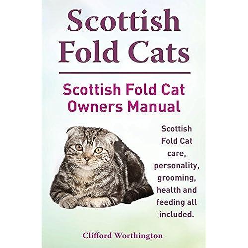 scottish fold amazon com rh amazon com Cat Decal Cat Filter