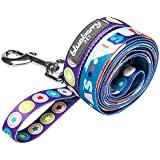Blueberry Pet 3/8-inch by 6-Feet Naughty Boy Artistic Sapphire Nylon Dog Leash for Puppy, X-Small Dog Lead