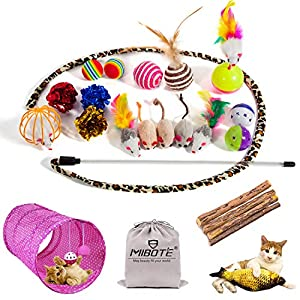 MIBOTE 28 Pcs Cat Toys Kitten Toys Assorted, Cat Tunnel Catnip Fish Feather Teaser Wand Fish Fluffy Mouse Mice Balls and Bells Toys for Cat Puppy Kitty with Storage Bag 19