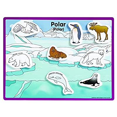 Excellerations 12 X 9 inch Habitats Magnetic Puzzle Boards, 6 Boards, 48 Pieces, Learning Activity, Animals in Their Habitats, Educational Toy Preschool: Industrial & Scientific