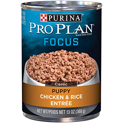 Purina Pro Plan Pate Wet Puppy Food; FOCUS Chicken & Rice Entree - 13 oz. Can (pack of 12) (Best Wet Dog Food For Puppies)