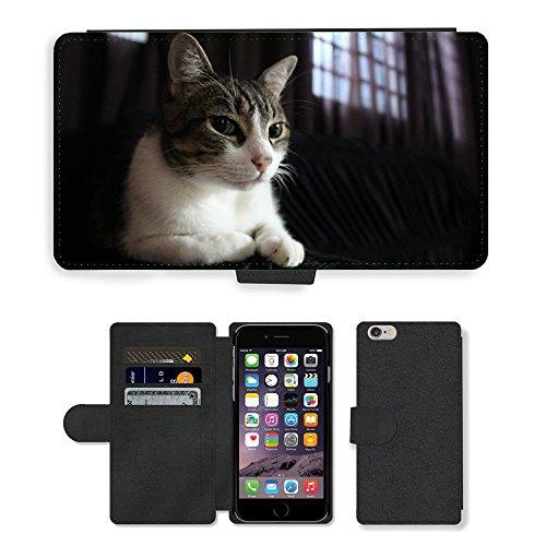 "GoGoMobile PU Leather Flip Custodia Protettiva Case Cover per // M00117753 Félin animal // Apple iPhone 6 4.7"""