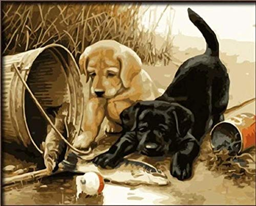 Dorara - Pintura al oleo para Adultos y ninos, Pintura por numero, Pintura al oleo Digital para Dos Perros Play Fun 16 x 20 Pulgadas