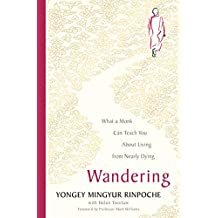 Wandering: What a Monk Can Teach You About Living from Nearly Dying (English Edition)