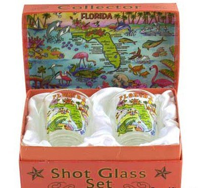 Florida Map Boxed Shot Glass Set (Set of 2)