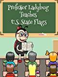 Professor Ladybug Teaches: U.S. State Flags