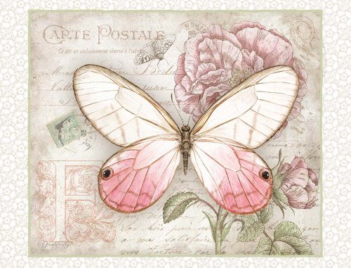 lang carte postale butterflies deluxe note card set by jane shasky x 4 inches 12 cards. Black Bedroom Furniture Sets. Home Design Ideas