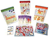 NewPath Learning 74-6704 Human Biology Skill Builder Kit