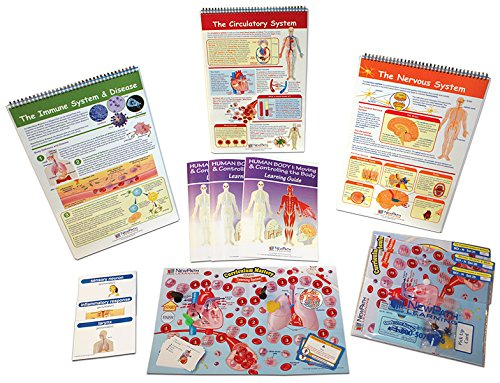 NewPath Learning 74-6704 Human Biology Skill Builder Kit by New Path Learning