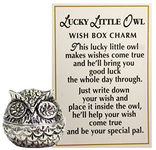 Lucky Little Owl Wish Box Charm With Story Card! (Good Luck Best Wishes)