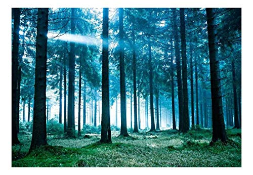 Blue Misted Forest at Sunrise Wall Mural Decor