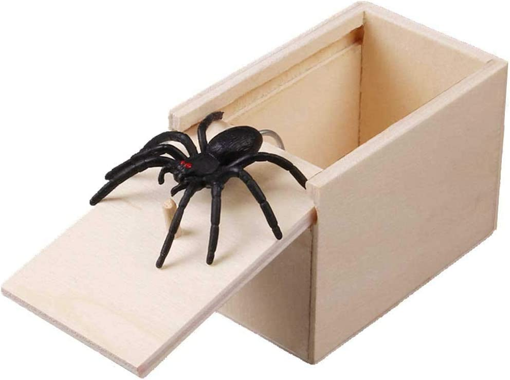 ROUNYY - Caja para repostería, diseño de arañas: Amazon.es: Hogar